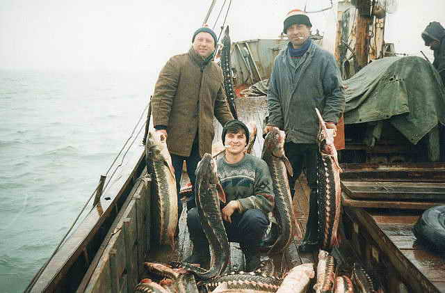 улов рыбака сканворд