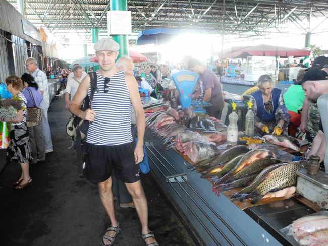 рынок рыболовных товаров ростов